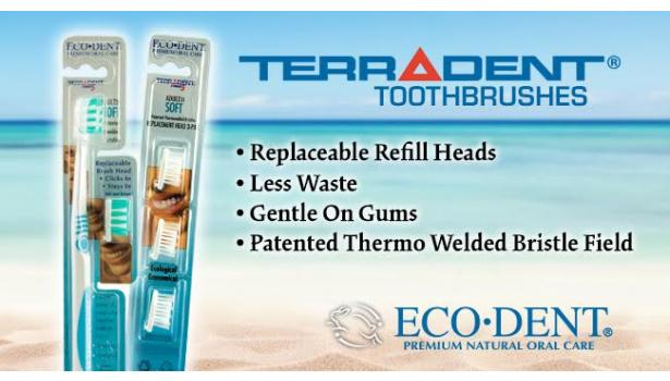 ECO-DENT TerraDent Replaceable Head Toothbrushes