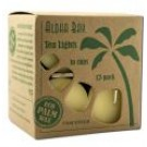 Unscented Tea Lights .7 oz 5 Hours Cream