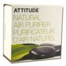 Activated Carbon Air Purifier 8 oz Lavender Eucalyptus
