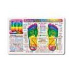 Original Wallet Cards Foot Reflexology (rainbow coded)