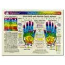 Original Laminated Charts Hand Reflex Chart (rainbow coded) eaches